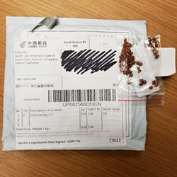 SOWING CONFUSION Residents throughout the Central Coast and nation are receiving unsolicited packages of seeds, many of which appear to be coming from China. - PHOTO COURTESY OF THE SLO COUNTY DEPARTMENT OF AGRICULTURE