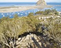 Local nonprofit successfully preserves Morro Bay open space