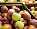 Your dream apple awaits! Finding the perfect peak-season apple at Gopher Glen