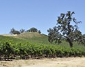 Land's end? As urban development in SLO County grows, important local farmland is shrinking