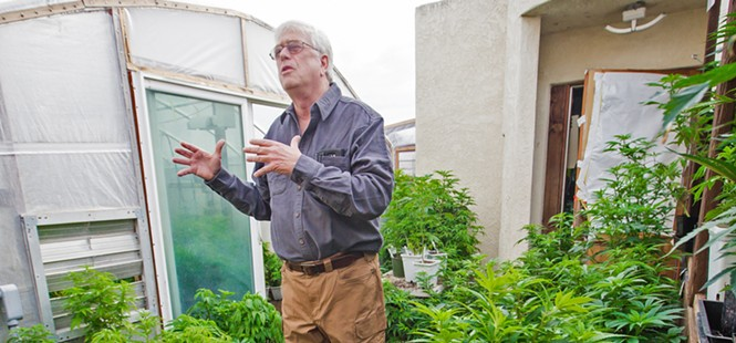 Bloom or bust: An inside look at the emerging legal cannabis industry in SLO County