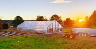 Templeton Hills Community Farm is a place to gather, learn, nourish the land, and be nourished by its bounty