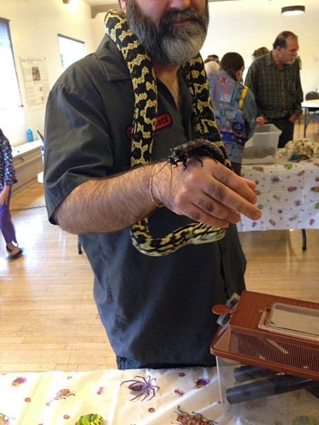 THE BEST OF FRIENDS?:  Brian, pictured, juggles a python and an exotic insect. - PHOTO BY ANNA WELTNER