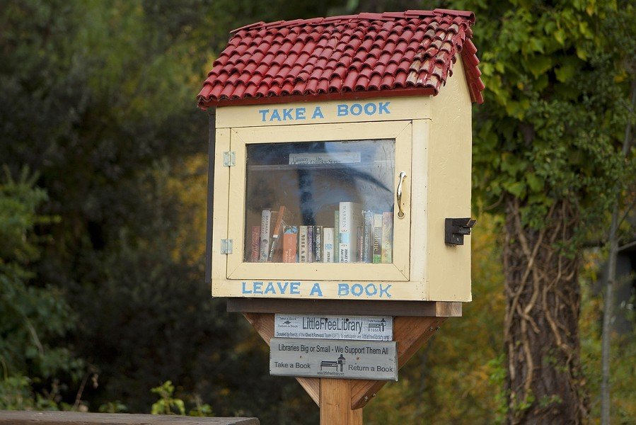 BOX O' BOOKS:  Look for the Little Free Library boxes around town where you can borrow a book or leave a book for others to read! - PHOTO BY STEVE E. MILLER