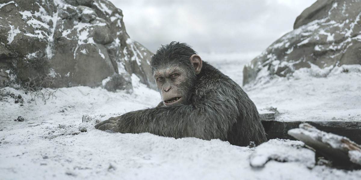 THE FINAL BATTLE In War for the Planet of the Apes, one fight will determine the future of humans, apes, and the planet. - PHOTO COURTESY OF 20TH CENTURY FOX