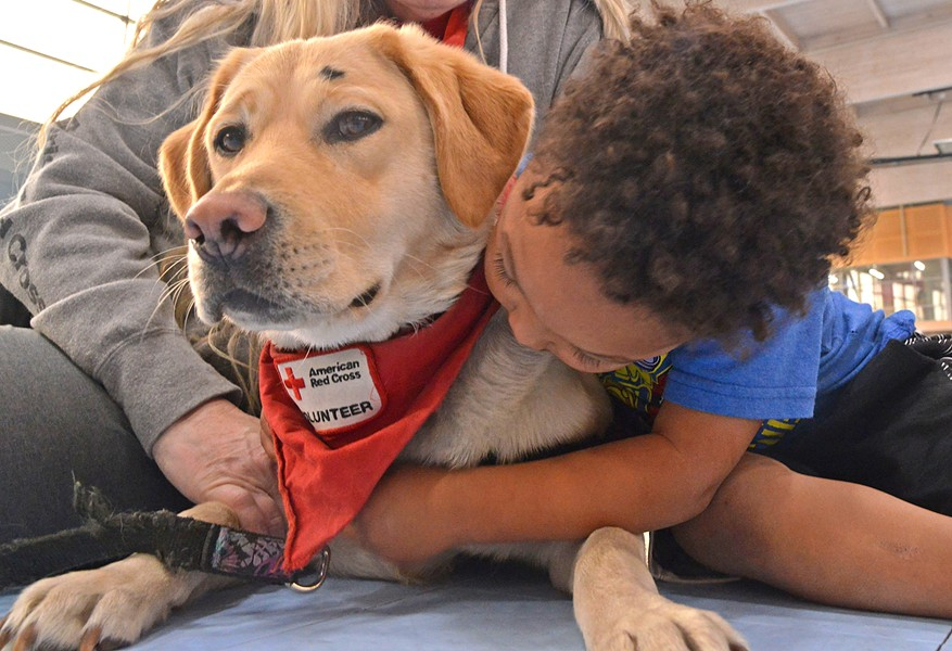 COMFORT After evacuating during the Thomas Fire to a nearby shelter, 3-year-old Davin hugs a Red Cross volunteer therapy dog owned by volunteer Carol Janssens. - PHOTO BY DERMOT TATLOW COURTESY OF THE RED CROSS