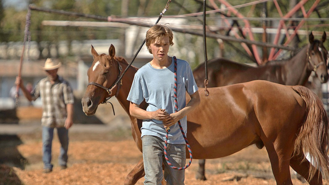 FINDING HIS WAY Charlie Plummer stars as Charlie, an adrift teen who takes a job working with race horses, eventually stealing one that's headed for the slaughterhouse. - PHOTO COURTESY OF BFI FILM FUND