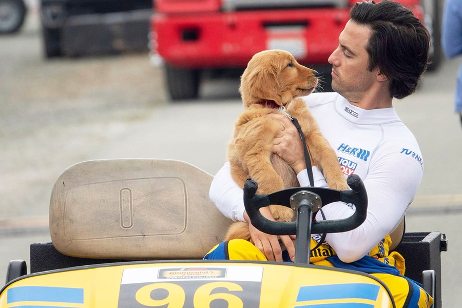A DOG'S BEST FRIEND Enzo (voiced by Kevin Costner) learns from his aspiring Formula One race car driver/owner Denny Swift (Milo Ventimiglia, right) that racetrack techniques can also successfully guide us through life, in The Art of Racing the Rain. - PHOTO COURTESY OF FOX 2000 PICTURES