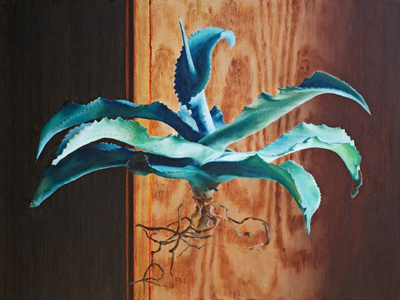 BEAUTIFUL BOTANICALS Tracy Paz's depiction of an agave plant is exceptionally realistic and lifelike. - IMAGE COURTESY OF TRACY PAZ