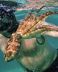 THROUGH HER EYES Craig Foster developed an unusual relationship with an octopus, who helps him see the world in a new light, in this Netflix documentary My Octopus Teacher.