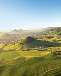 KEEPING IT COOL San Luis Obispo County's coastal wine region spans 5,000 planted acres with 20 grape varieties, led by chardonnay and pinot noir. Marine conditions create the state's coolest vineyard climate and one of the world's longest growing seasons.