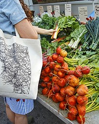 COOK LIKE A LOCAL WITH 'SLO FARMERS' MARKET COOKBOOK'