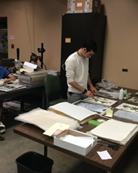 BOTANY FOR THE MASSES: CAL POLY'S HOOVER HERBARIUM WELCOMES VOLUNTEERS
