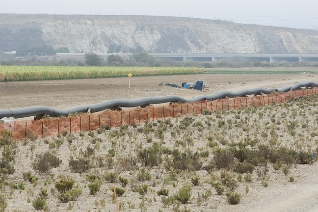 THAT'S A BIG PIPE:  The steel-cased pipeline was welded and pressure tested prior to being dragged through the hole under the riverbed. - PHOTO BY STEVE E. MILLER