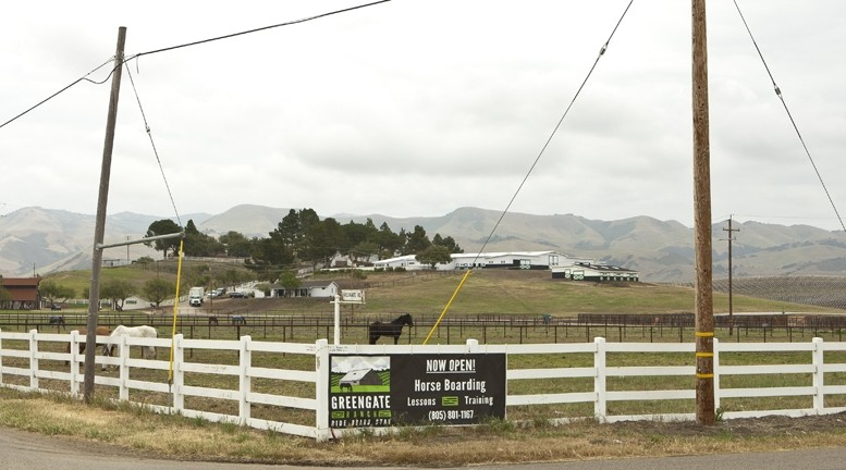 OLD RANCH LEARNS NEW TRICKS :  The new owners of Green Gate Farms, a 210-acre site in Edna Valley, want to transform the once-renowned equestrian facility into a vacation destination with a museum, permanent farm stand, vineyard, and frequent events. - PHOTO BY STEVE E. MILLER