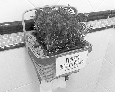 FLUSHED BOTANICAL GARDEN :  Nothing Happened Here—specifically Catherine and her daughter Cruz—established a botanical garden in a restroom at the Madonna Inn. - PHOTO COURTESY OF NOTHING HAPPENED HERE
