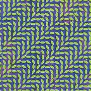 starkey-cd-animal_collective.jpg