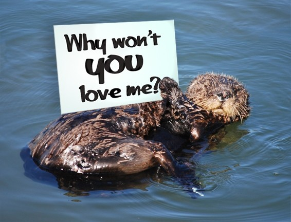 OTTER NONSENSE? :  For the first time in six years, the Morro Bay City Council may forgo raising awareness for the threatened sea otter, citing opposition from the fishing community. - PHOTO ILLUSTRATION