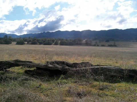 THE DOCUMENT HAS LANDED :  A recently released 10-pound draft environmental impact report details impacts of future development to the community of Santa Margarita, surrounded by the Santa Margarita Ranch, pictured here. - PHOTO BY KATHY JOHNSTON