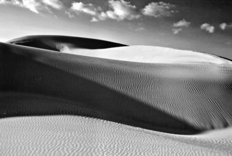 """PISMO DUNES #2� THIRD PLACE LAND/SEASCAPE BW: - CRIS MITCHELL"