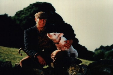 THANK YOUR LUCKY PIG :  James Cromwells film career got a huge boost after he played Farmer Hoggett in Babe. The vegan would never consider slaughtering an animal for food in real life.