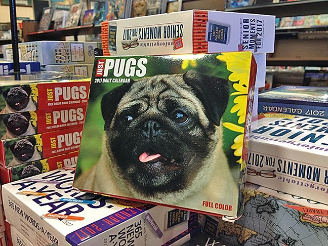 PUGS PUGS PUGS:  No matter what they are into, there's always a gift for everyone. - PHOTO BY CHRIS MCGUINNESS