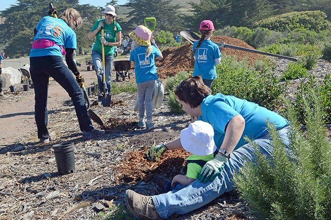 EARTH WORK:  Volunteers work on projects as part of PG&E's annual Earth Day event at Montaña de Oro State Park. - PHOTO COURTESY OF PG&E