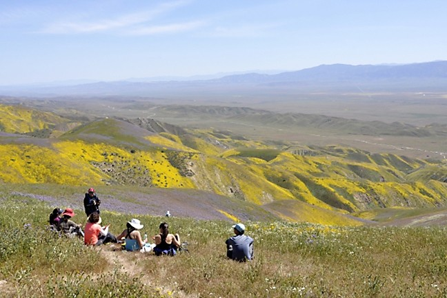 UNDER REVIEW:  The Carrizo Plain is one of six California national monuments now facing an uncertain future after a Trump executive order asked officials to re-evaluate monuments' protected status and boundary lines. - PHOTO BY CAMILLIA LANHAM