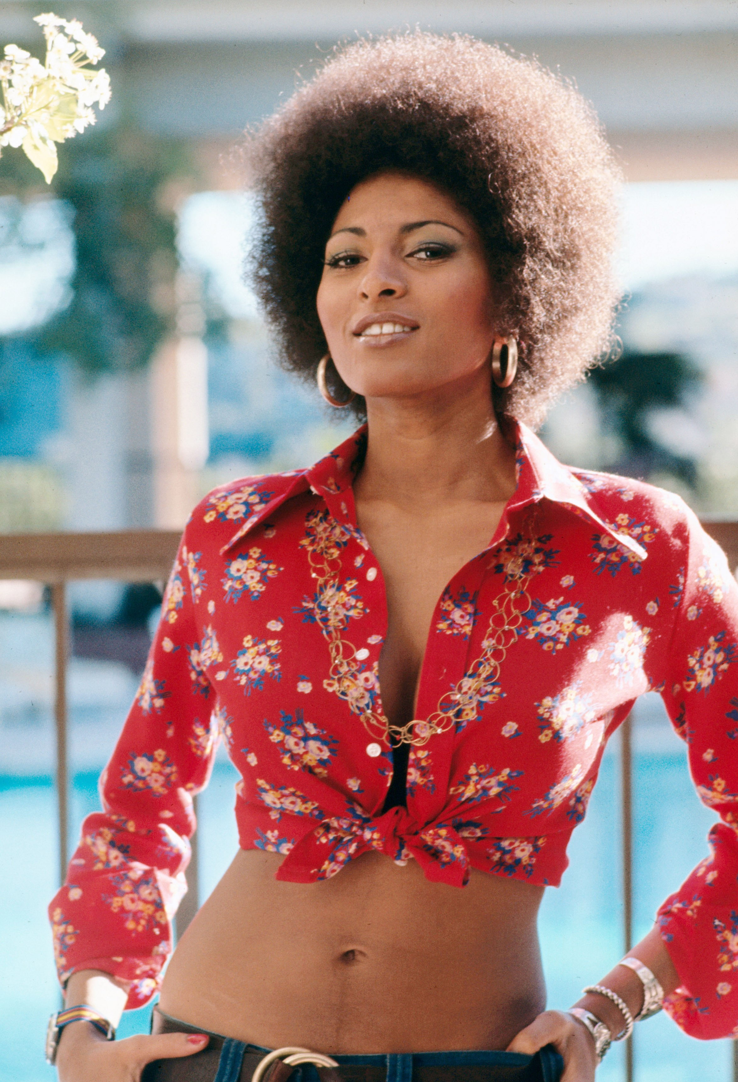 Pictures Pam Grier nudes (84 photos), Sexy, Fappening, Boobs, see through 2015