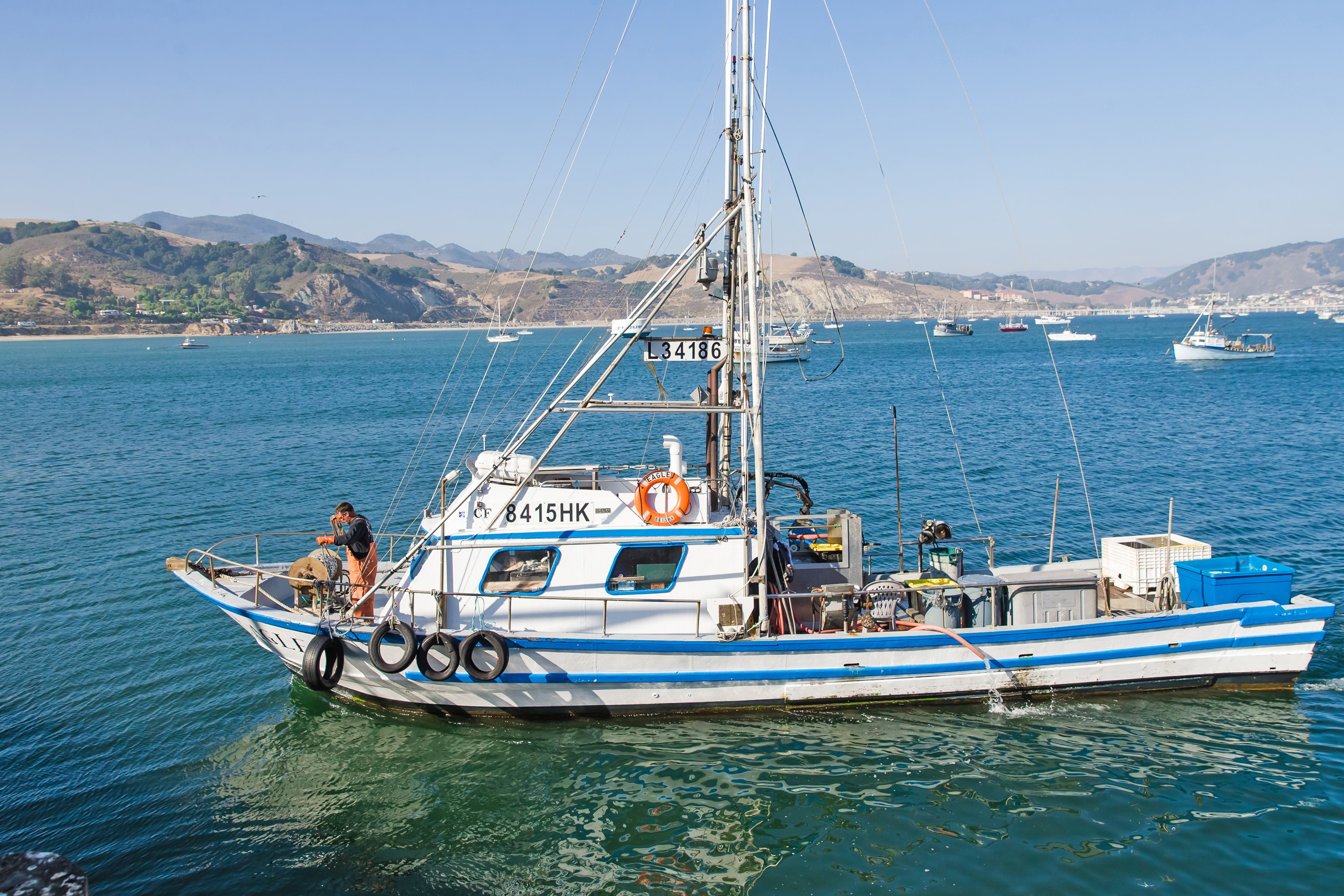 Fish out of water: A fishermen's-eye view of the local