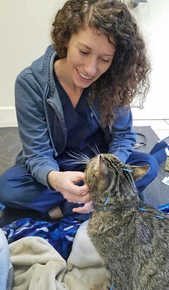 GOOD MEDICINE Veterinarian Rebecca Staple offers rehabilitation and acupuncture for SLO residents' furry companions at Coastal Veterinary Rehabilitation and Acupuncture in Los Osos. - PHOTO COURTESY OF REBECCA STAPLE