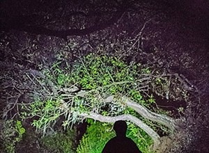 Night hiking proposed on Cerro San Luis