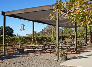Lone Madrone makes fancy wines in a cozy place