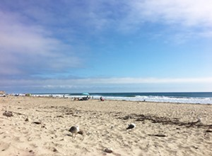 Burgers with a view: Check out the sandy shore at Jalama Beach County Park
