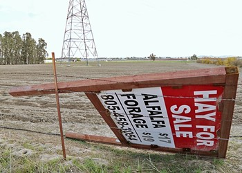 Mine the gap: A time rift between two water conservation ordinances meant more planting over the Paso basin