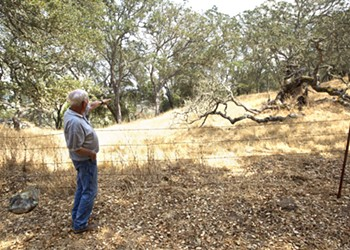 Future loss: Two decades of planning is put on hold as Atascadero residents worry about the impacts more than 500 proposed homes would bring