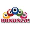 Bingo Bonanza 2020 @ Veteran's Memorial Building