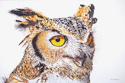 Great Horned Owl - Uploaded by Gallery Los Olivos