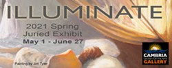 Calling All Artisits! Virtual Juried Show at Cambria Virtual Gallery - Uploaded by Sheri Parisian