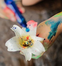 Painted Lily - Uploaded by Sue Allemand 1