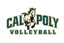4f2c0242_volleyball_wordmark.png