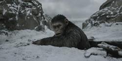 film.apes.07.13.jpg