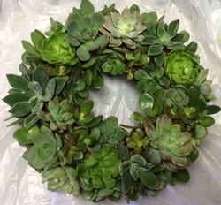 8c779f7f_2017-11-12_succulent_wreath_300.jpg