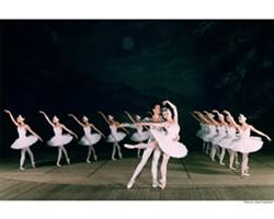 swan_lake_2-2.jpg