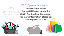7735151a_805-spring_boutique_march_10th_10-3pm_spring_hill_suites_by_.png