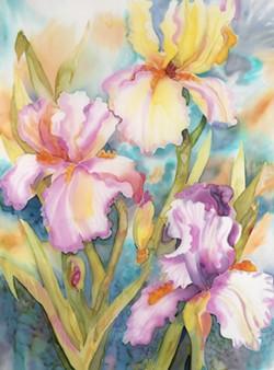 ab519d25_garden_glory_-_sheila_underwood_30.5_x_22.5.jpg