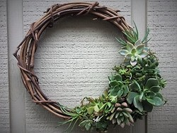 Learn how to make a succulent wreath - Uploaded by Joan Martin Fee
