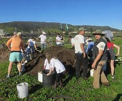 City Farm SLO Work Party - Uploaded by Sandra Marshall 1
