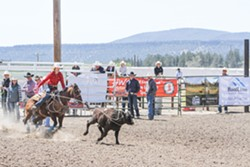 PHOTO COURTESY OF AIMEE DAVIS - WRANGLING A IN PASSION Aimee Davis has been participating in the rodeo scene for several years now, and she continued by joining the Cuesta College rodeo team.