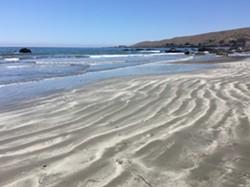 Sand Patterns - Uploaded by Patti Everett